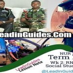 Lesson-Note-Third-Term-Week-2-Social-Studies-Nursery-2